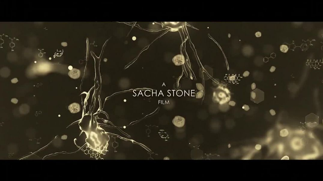 MALARIA CURE COVERED UP - Sacha Stone