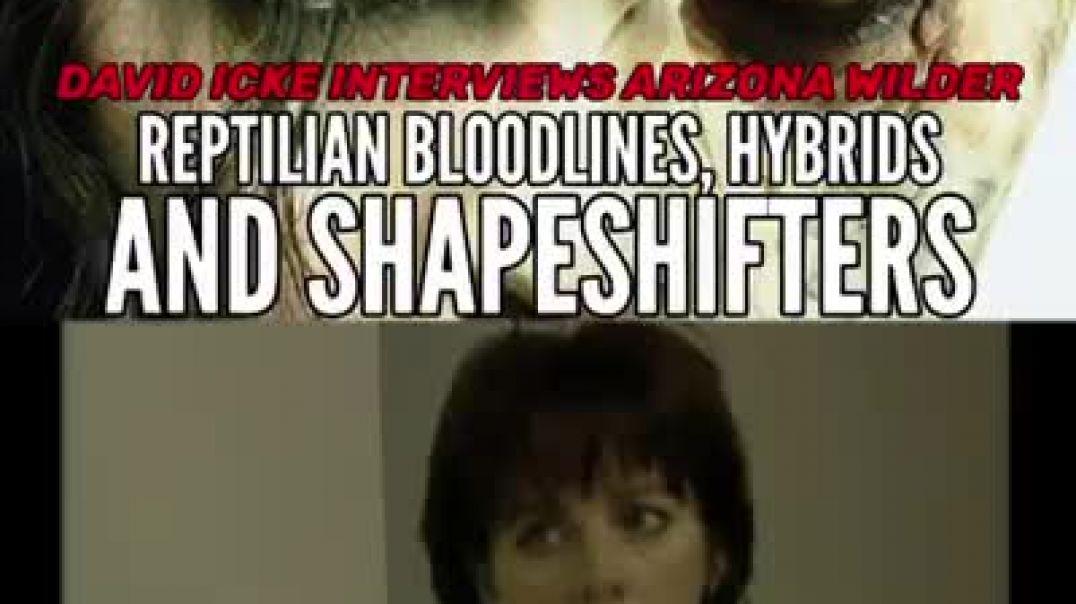 David icke interview Reptilian, bloodline hybrid, shapshifters